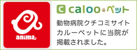calooペット interview